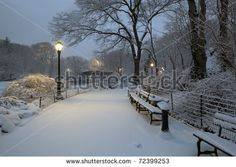 """BB """"Winter City Path"""" : In this serene photograph, we find an untouched cushion of snow covering the ground and benches in a delicate and and rare moment of quiet in the city. Streetlamps illuminate the scene, just as the mural can illuminate your room."""
