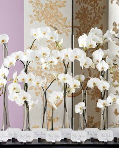 Beautiful orchids for card tables/ Centerpieces~ Amaryllis Decorators Northvale, New Jersey