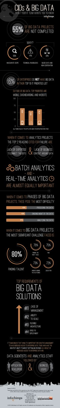 CIOs y Big Data #infografia #infographic #internet