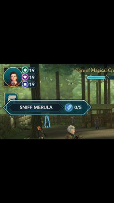 SNIFF MERULA?!?!