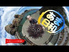 新人海女さんがカメラを付けて ウニ採りを体当たりレポート!? 「あまちゃん」の舞台・久慈の魅力を伝える エンタメ動画『あま日和』公開! – おもしろ・おどろき・気になるニュース