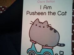 I am Pusheen the Cat :3