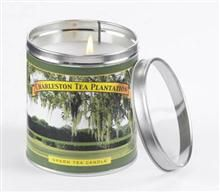 charleston tea plantation : green tea candle tin
