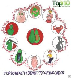 Top 10 Health Benefits of Avocados Natural Cancer Cures, Natural Cures, Natural Healing, Avocado Health Benefits, Top 10 Home Remedies, Heart Attack Symptoms, Colon Health, Usda Food, Cancer Fighting Foods