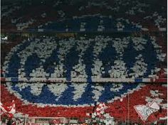 Fc Bayern Fans, Rugs, Home Decor, Farmhouse Rugs, Decoration Home, Room Decor, Carpets, Interior Design, Home Interiors