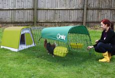 Might have to get me some chickens if the coop is going to be this stylish!