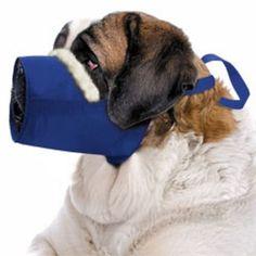 Cozy Quick Muzzle Blue *** Don't get left behind, see this great dog product : Dog muzzle Dog Muzzle, Pet Dogs, Pets, Dog Food Storage, Dog Shower, Dog Eyes, Dog Pin, Dog Diapers, Dog Travel