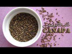 Latte di semi di canapa fatto in casa (hemp milk) - YouTube