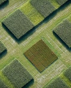 Aerial Photography - Cameron Davidson | Square shape sequence