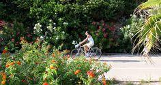 Ciclismo e cicloturismo s'incontrano in Liguria! Il Giro D'Italia 2015 partirà da una…..ciclabile. #giro #bicicletta #ciclabile #sanremo