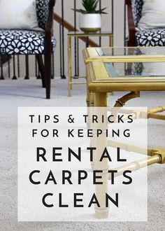 Tips and Tricks for Keeping Your Rental Carpets Clean