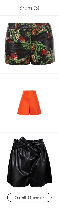 """""""Shorts (3)"""" by geniusmermaid ❤ liked on Polyvore featuring shorts, bottoms, delpozo, pants, high rise shorts, highwaist shorts, high-waisted shorts, short shorts, short and hot short shorts"""