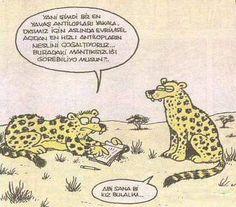 charming life pattern: karikatür - yani şimdi biz en yavaş antilopları ya...