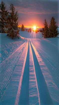 Those lines. That sunrise! Honestly, winter can be amazing. :) Winter Sunrise - title Skiing into morning light. - by Jornada Allan Pedersen Beautiful Sunset, Beautiful World, Beautiful Winter Scenes, Beautiful Images, Winter Scenery, Winter Sunset, Winter Snow, Winter Time, Winter Light