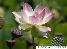 Daily Meditation: Sacred Words