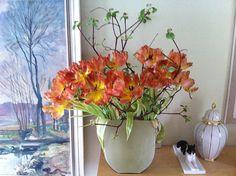Tulpen mit Hartriegel by Margit Hohenberger, via Flickr