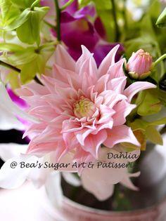 Sugar dahlia @ Www.facebook.com/BeaSugarArt