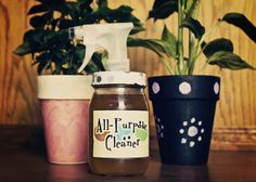 Homemade All-Purpose Cleaner with Infused Vinegar