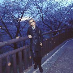 YOSHIKI : Photo