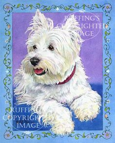 west highland terrier art - Google Search