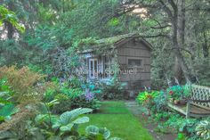 'The Poet's House' by Marilyn Cornwell Toronto Gardens, Toronto Ontario Canada, Blossom Garden, Potting Tables, Sheds, Cottages, Oasis, Garden Ideas, Home And Garden