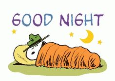 These classic Snoopy cuts have been retouched and reborn as animated stickers! Good Night Image, Good Night Quotes, Good Morning Good Night, Good Night Sleep, Snoopy Cartoon, Peanuts Cartoon, Peanuts Snoopy, Snoopy Love, Snoopy And Woodstock