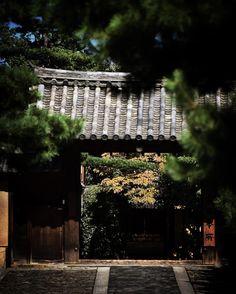 #大徳寺 #寺 #寺院 #京都 #御朱印巡り #日本の景色 #日本の風景 #日本の美 #写真を撮っている人と繋がりたい #写真が好きな人とつながりたい #ニコン倶楽部 #ニコンd7200 #kyoto #daitokuji #temple #stamp #japanesescenery #discoveryjapan #japan🇯🇵 #nikond7200 #tokina535
