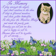 In Memory of a pet | Jewels Art Creation