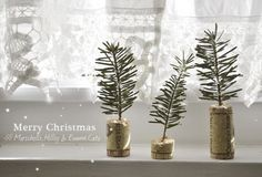Cork Project | 14 Pine Tree Sprig Decorating Ideas For Your Homestead | Inexpensive & Elegant DIY Crafts & Home Decor For Christmas Celebration by Pioneer Settler at http://pioneersettler.com/pine-tree-sprig-decorating-ideas/