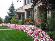 46 Small Front Yards Curb Appeal Flower Beds - All For Garden Landscaping With Rocks, Front Yard Landscaping, Landscaping Ideas, Small Front Yards, Petunia Flower, Very Beautiful Flowers, Beautiful Gardens, Flower Bed Designs, Garden On A Hill