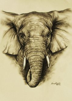 Elephant in charcoal by HappyCanvasArt on Etsy, €7.50