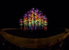 Glowing Roundabout.  #elpaso #tx #instaeptx #itsallgoodep #elp  #nightlights #Nightscape #instagood #igers #border  #igerselpaso #instalike #nikon #texas #DTEP  #fisheye #urbanphotography  #rokinon #elp#visitelpaso #utep#art#buthan #elpasoandchill by comonzon