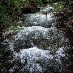 Small river #derborence #valaiswallis #igersuisse #valais #switzerland #visitvalais #suisse #nature #river #water