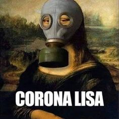 Monalisa in mask meme Baked Yams, Best Memes, Funny Memes, Hilarious, Jokes, Fresh Vegetables, Meal Planning, Alcoholic Drinks, Mona Lisa
