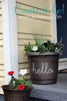Love it on the flower pot!