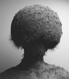 Fur V by Can Pekdemir