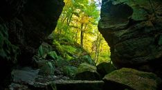 Parfrey's Glen, Wisconsin's first State Natural Area, is a spectacular gorge…