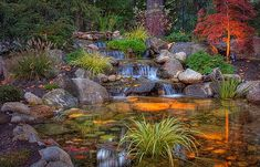 Waterfall and pond.