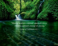 """""""Many waters cannot quench love; rivers cannot sweep it away."""" ~ Songs of Solomon 8:7"""