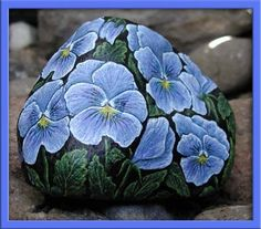 Pansy - Blue