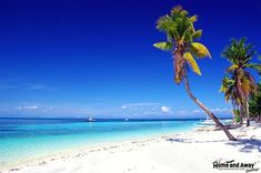 When planning your beach holidays in Indonesia, make sure you visit Bali for a memorable time on its beautiful beaches. You can also explore its coral reefs and indulge in lots of fun-filled water activities. Bantayan Island, Maldives Holidays, Robinson Crusoe, Cheap Holiday, Water Activities, Palawan, Beach Holiday, Cebu, Day Tours