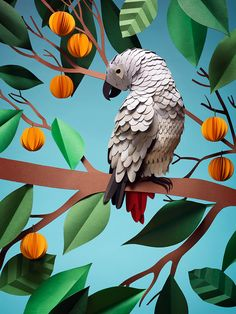 Paper Craft by Fideli Sundqvist #papercraft