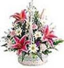 Mixed Flower Basket for Hyderabad delivery. Available at : www.flowersgiftshyderabad.com/MothersDay-Gifts-to-Hyderabad.php