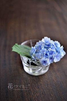 辻和美 花ちょこ 紫陽花 - Hydrangea Kazumi, Silver Rings, Flowers, Blue, Royal Icing Flowers, Flower, Florals, Floral, Blossoms