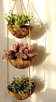 Coconut hanging garden planters could diy Hanging Flower Pots, Hanging Planters, Planter Pots, Bamboo Planter, Hanging Gardens, Diy Home Crafts, Garden Crafts, Garden Projects, Terrarium Cactus