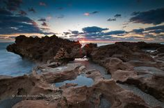 Coral Cove Park, Tequesta, Florida [Explored] by simonrim, via Flickr