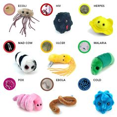 Microorganism plushies!