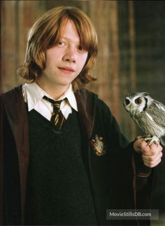 Harry Potter and the Goblet of Fire (2005) Rupert Grint