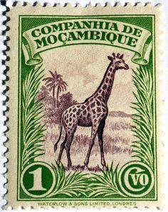 Companhia de Mocambique .