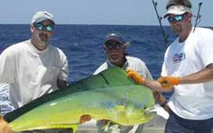 Deep Sea Fishing The atmosphere of Dubai is naturally provides these both facilities to the riders. The Gulf water is naturally warm and the days in Dubai are commonly sunny. So it is a natural gift for you. http://marinadhowcruisedubai.com/index.html